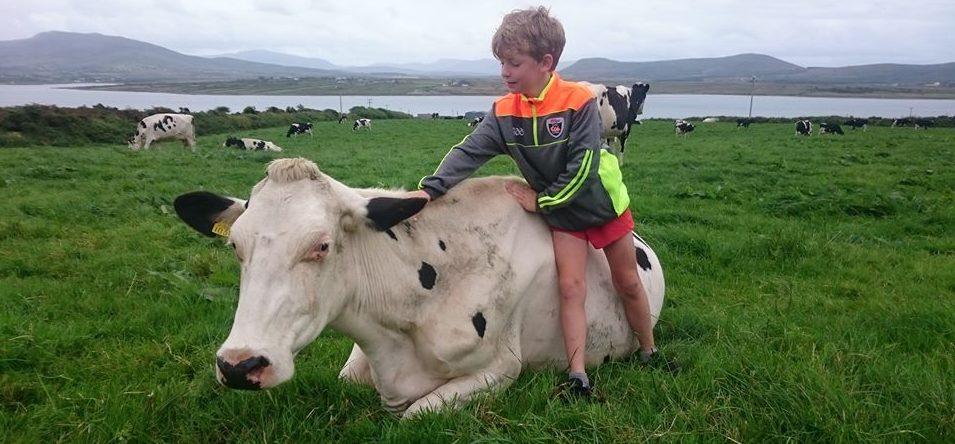 Family @ Valentia Island Farmhouse Dairy